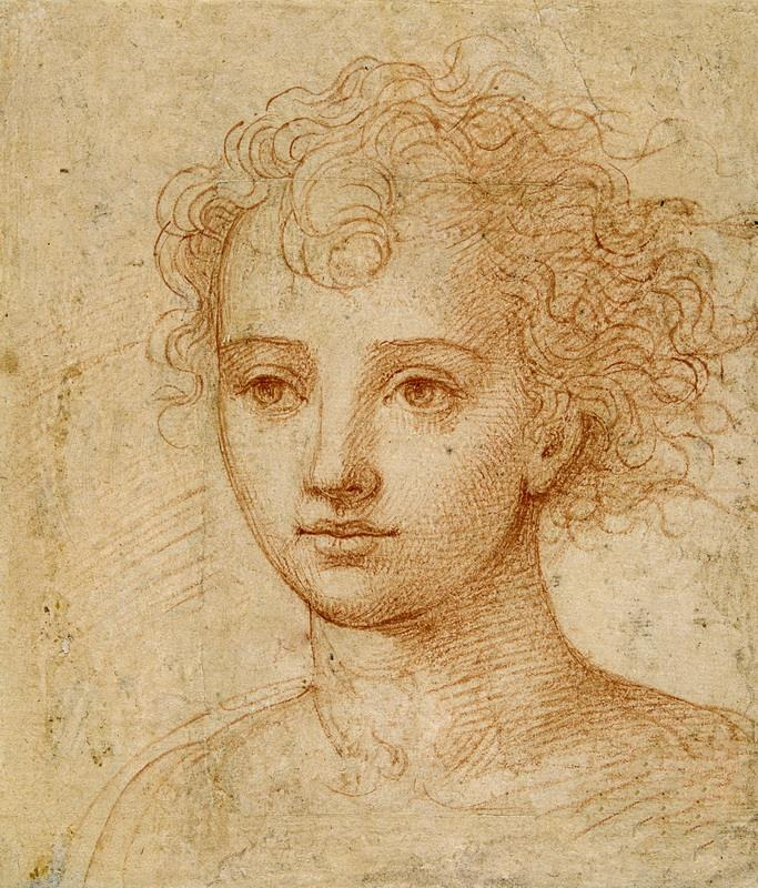 Obra de Arte - Cabeza femenina - Leonardo Da Vinci